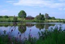 kingfisher lodge lakeside holiday cottage